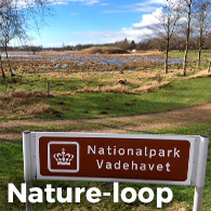 Nationalpark Vadehavet i Varde